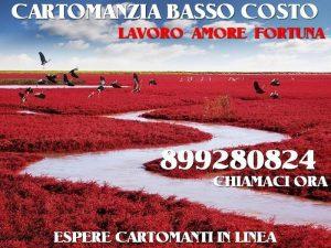 Cartomanzia Seria 899280824